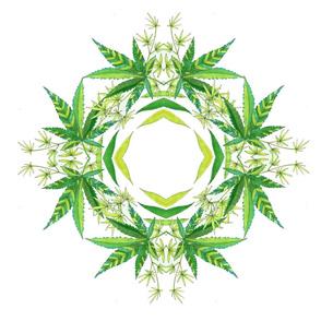 Cannabis Mandala