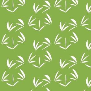 Snowy White Tussocks on Ferny Green