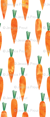 carrots (small scale)
