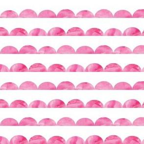 scallops || pink watercolor