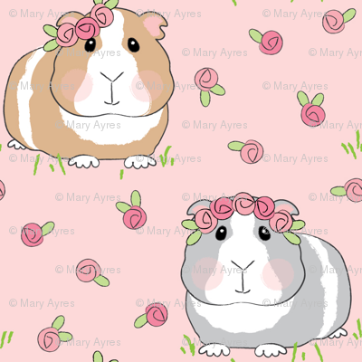 large guinea pigs and roses