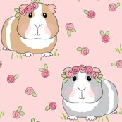 Rrrrrguinea-pigs-with-roses-larger_shop_thumb