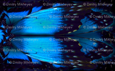 Butterfly_wing_fab_pattern_preview