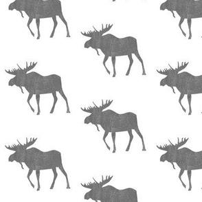 Moose on White