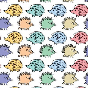 hedgehogs and porcupines