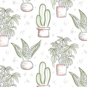 Large Houseplants - white