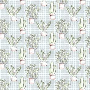 Small Houseplants - blue tile