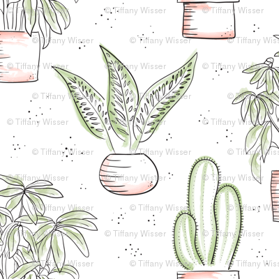 Houseplants - white