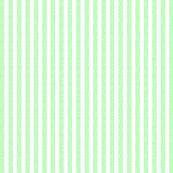 Buzz Stripe - Icy Green