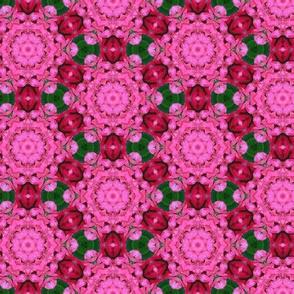 tiling_IMG_4283_1