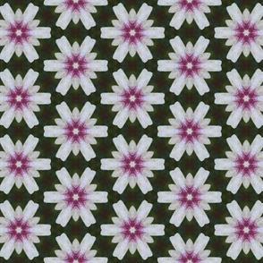 tiling_IMG_4284_4