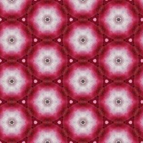 tiling_IMG_4298_13
