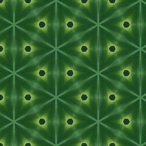tiling_IMG_4298_10
