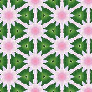 tiling_IMG_4298_8