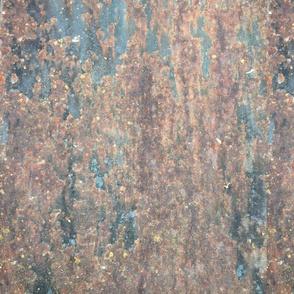 rusted door 1