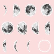 Rrmoon_phases_sketch_pink_shop_thumb