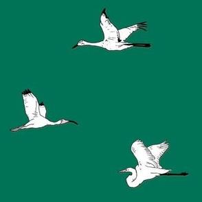 Bird Watching - Emerald