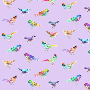 Songbirds_LARGE_Lilac