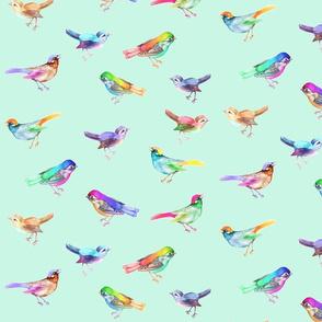 Songbirds_LARGE_PalestDuckegg