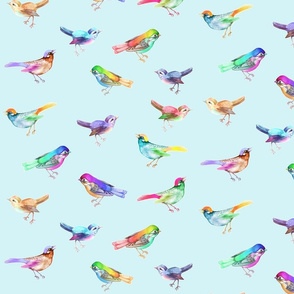Songbirds_LARGE_PaleBlue