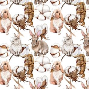 Cotton Bunnies