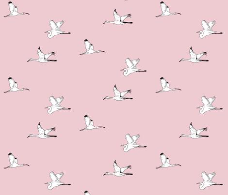 Bird Watching - Pink fabric by kohler on Spoonflower - custom fabric