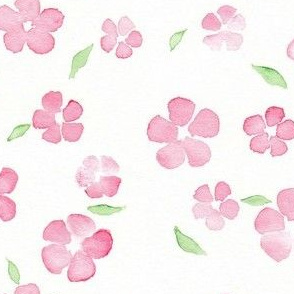 pink and pale green floral watercolor