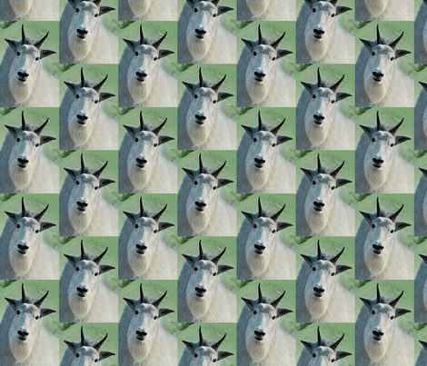 MountainGoat fabric by jacneed on Spoonflower - custom fabric