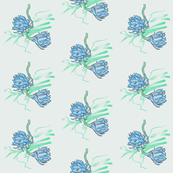 Cereus Blooming