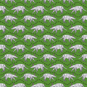 aardvark_ants_avocado