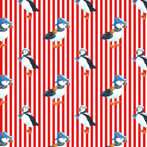 red puffin stripe