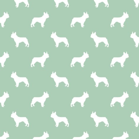 Rrfb_sil_mint_green_shop_preview
