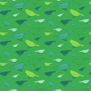 small green birds
