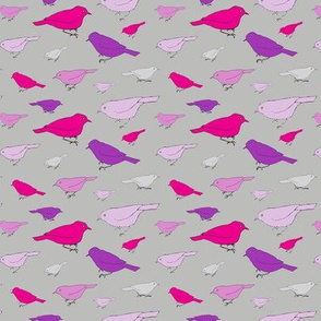 small purple birds