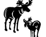 Moose_pattern_thumb