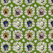 dogs_daisies_green