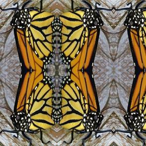 Monarch Match Up