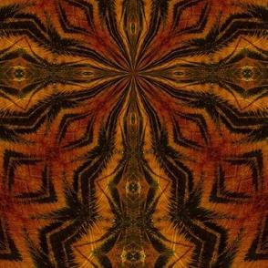 indian_tiger_2