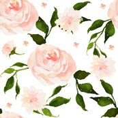 Rfloral_swan_florals_shop_thumb