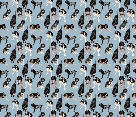 Rbluetick-coonhound-pattern_shop_preview