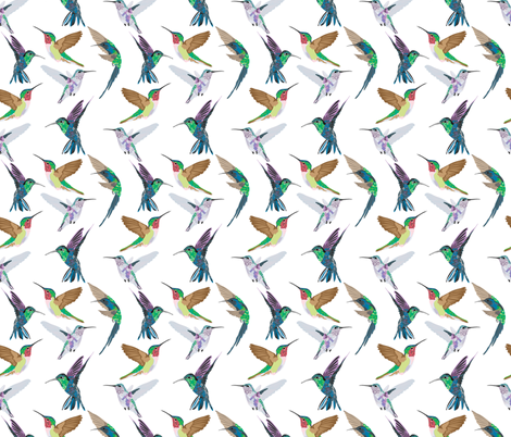 Humming Bird fabric by vieiragirl on Spoonflower - custom fabric