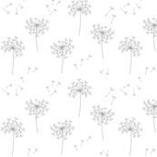 grey blowing dandelions for mom
