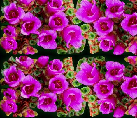 IMG_0786 fabric by martha_kyak on Spoonflower - custom fabric