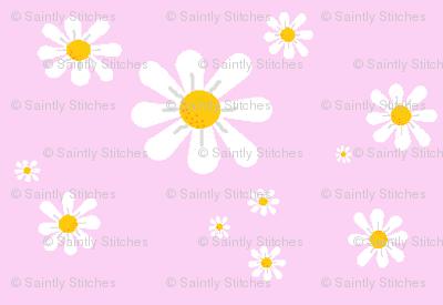 Little_Carmilite_Daisies