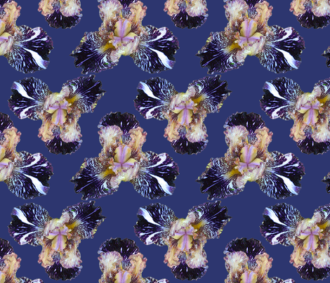 iris_indigo_ivory_8 fabric by leroyj on Spoonflower - custom fabric