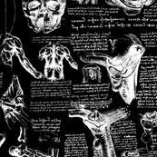 D Vinci's Anatomy Sketchbook //  Black