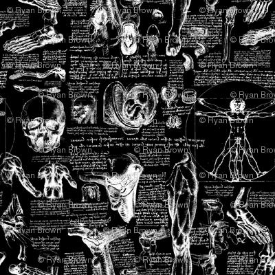 Da Vinci's Anatomy Sketchbook //  Black // Small