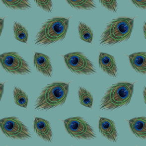 peacock_feather_pattern_01_