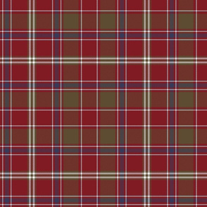"King George IV / Dalziel tartan, 10"" weathered"