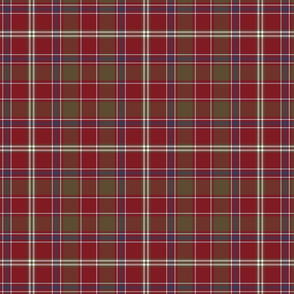 "King George IV / Dalziel tartan, 7"" weathered"